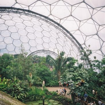 Eden Project | Проект Эдем